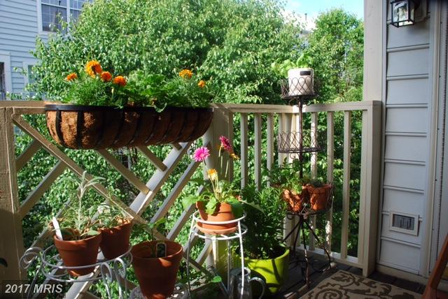 Garden 1-4 Floors, Traditional - ALEXANDRIA, VA (photo 5)