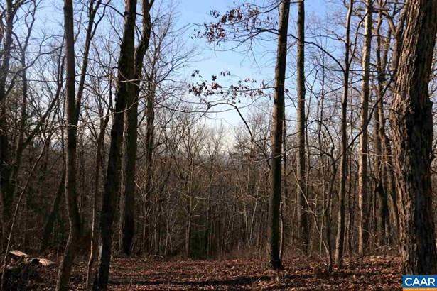 Land - GORDONSVILLE, VA (photo 2)