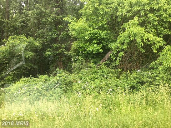 Lot-Land - CHESTERTOWN, MD