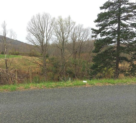 Land (Acreage), Lots/Land/Farm - Goodview, VA (photo 1)
