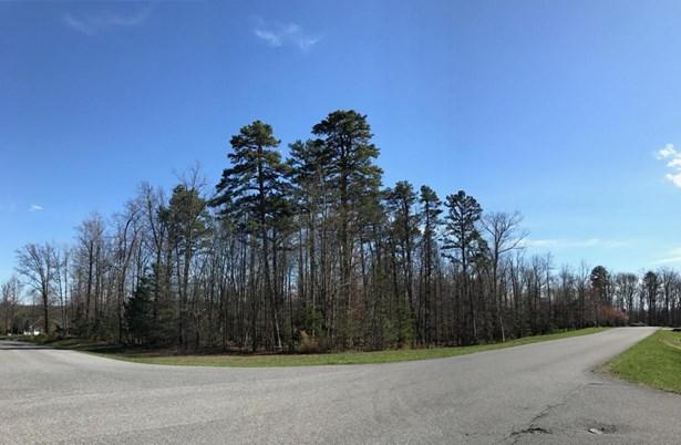 Lot, Lots/Land/Farm - Blue Ridge, VA (photo 5)