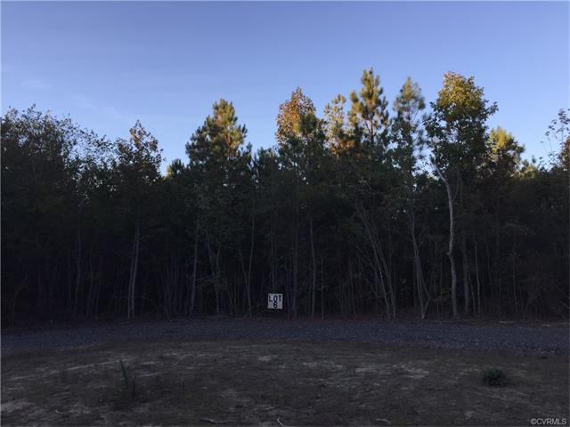Lots/Land - Mc Kenney, VA (photo 1)