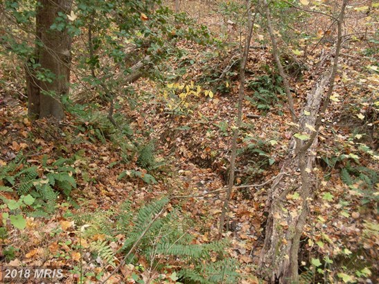 Lot-Land - BRANDYWINE, MD (photo 2)