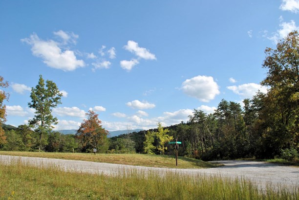 Land (Acreage), Lots/Land/Farm - Elliston, VA (photo 3)