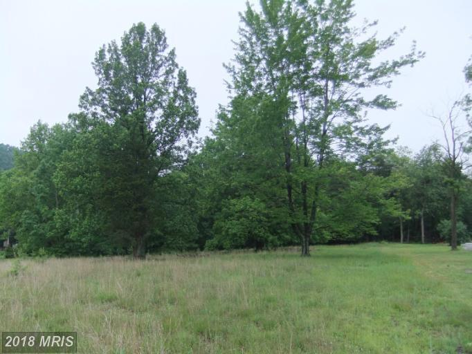 Lot-Land - WARFORDSBURG, PA (photo 1)