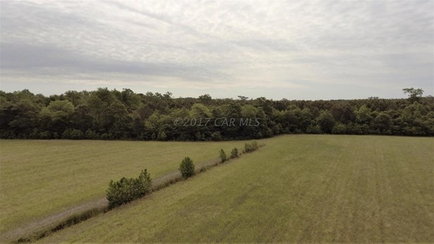 Unimprvd Lots/Land - Parsonsburg, MD (photo 5)
