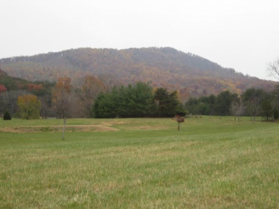Land (Acreage), Lots/Land/Farm - Vinton, VA (photo 1)