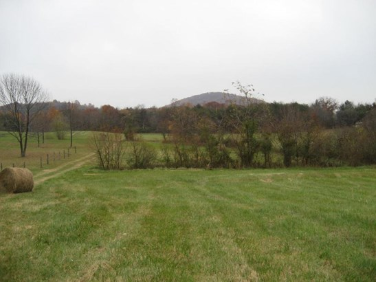 Land (Acreage), Lots/Land/Farm - Vinton, VA (photo 3)