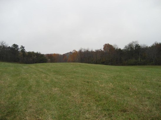Land (Acreage), Lots/Land/Farm - Vinton, VA (photo 5)