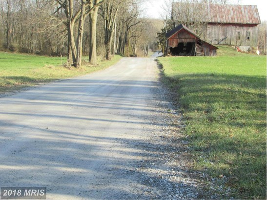 Lot-Land - TANEYTOWN, MD (photo 5)