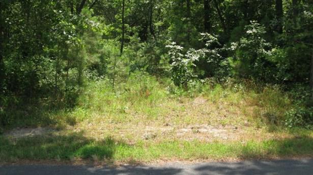 Land - Parksley, VA (photo 1)