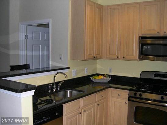 Garden 1-4 Floors, Contemporary - ARLINGTON, VA (photo 2)
