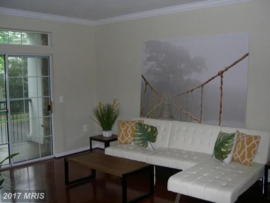 Garden 1-4 Floors, Contemporary - ARLINGTON, VA (photo 4)