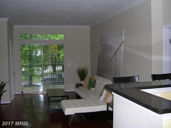 Garden 1-4 Floors, Contemporary - ARLINGTON, VA (photo 5)