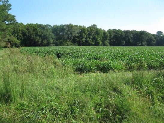 Land - Daugherty, VA (photo 1)