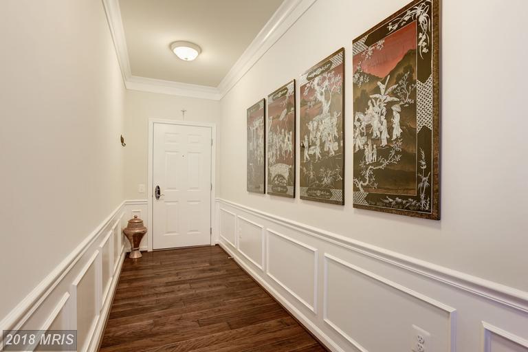 Garden 1-4 Floors, Contemporary - ASHBURN, VA (photo 2)