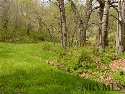 Land - Pearisburg, VA (photo 1)