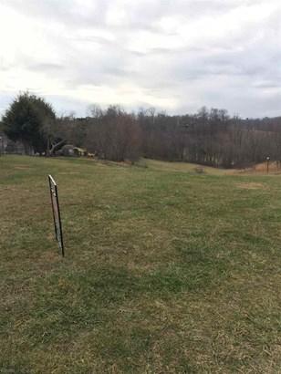 Land - Wytheville, VA (photo 2)