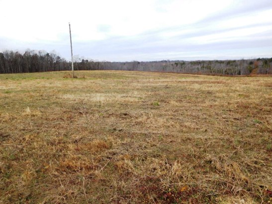 Farmland, Timber, Orchard, Beef Cattle, Lots/Land/Farm - Nathalie, VA (photo 5)
