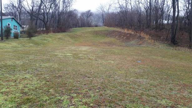 Lot, Lots/Land/Farm - Buchanan, VA (photo 1)