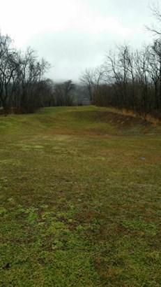 Lot, Lots/Land/Farm - Buchanan, VA (photo 2)