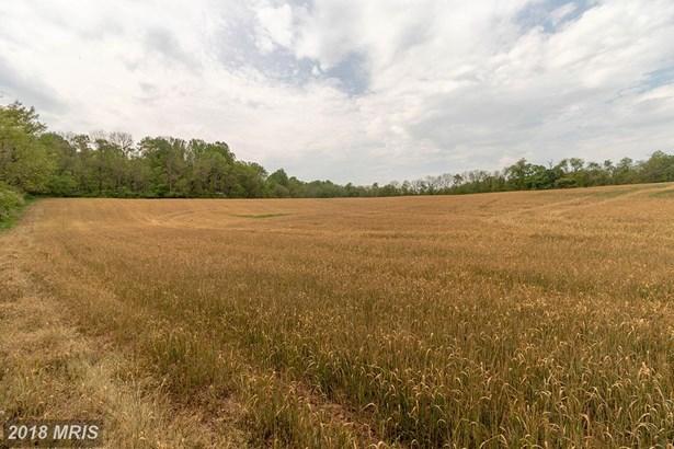 Lot-Land - BARNESVILLE, MD (photo 2)
