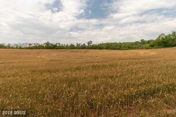Lot-Land - BARNESVILLE, MD (photo 3)