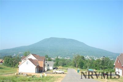 Lots/Land - Pearisburg, VA (photo 1)