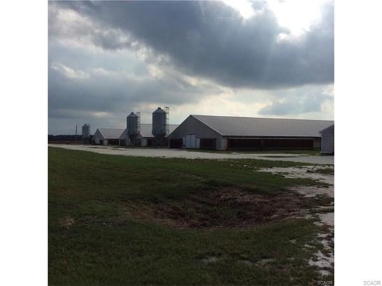 Farms - Millsboro, DE (photo 4)
