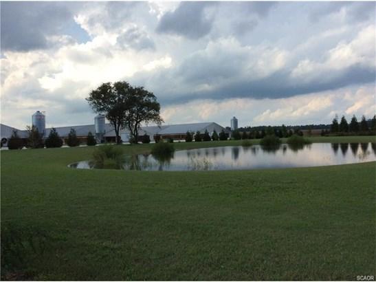 Farms - Millsboro, DE (photo 5)