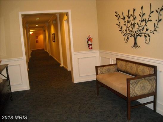 Garden 1-4 Floors, Contemporary - GAMBRILLS, MD (photo 4)