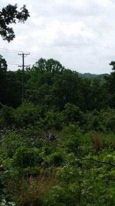 Unimproved Land - Monroe, VA (photo 1)