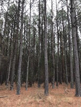 Land/Lots - Boydton, VA (photo 4)