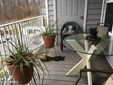 Garden 1-4 Floors, Rancher - MIDDLE RIVER, MD (photo 1)