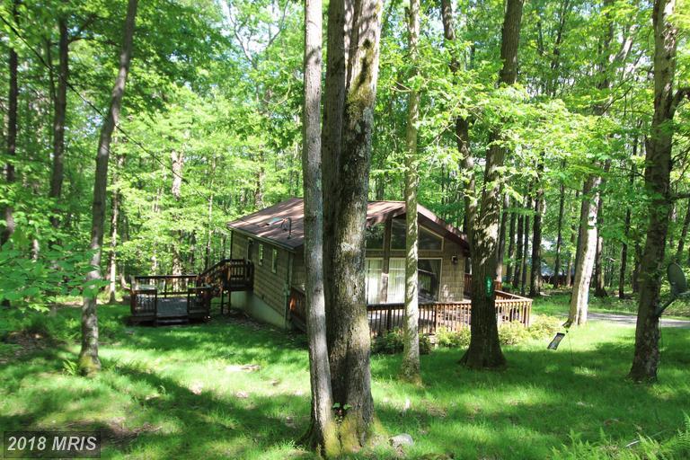 Cabin, Detached - TERRA ALTA, WV (photo 2)