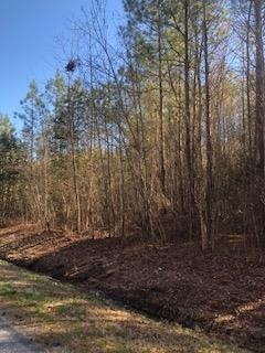 Land/Lots - Lawrenceville, VA (photo 1)