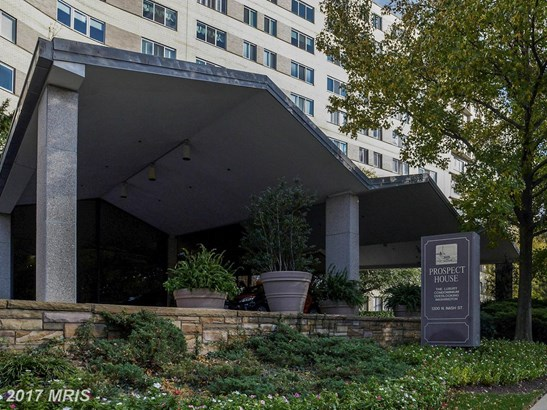 Garden 1-4 Floors, Contemporary - ARLINGTON, VA (photo 3)