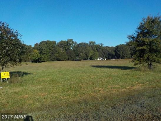 Lot-Land - HURLOCK, MD (photo 2)