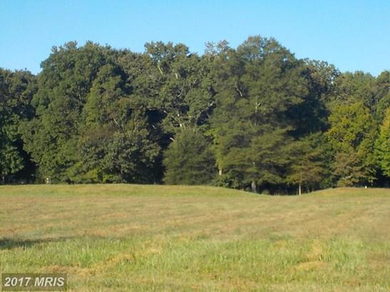 Lot-Land - HURLOCK, MD (photo 3)