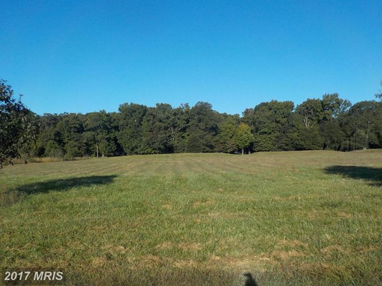 Lot-Land - HURLOCK, MD (photo 4)
