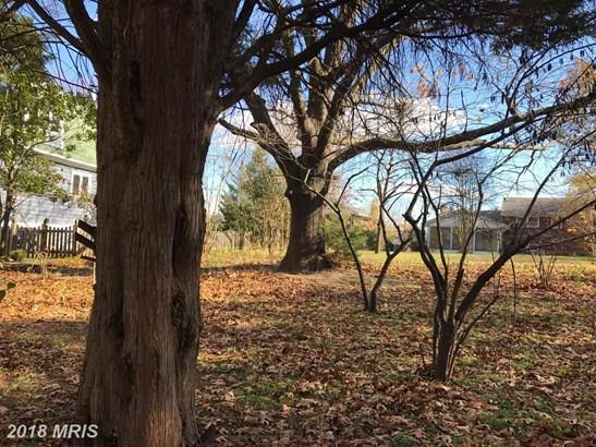 Lot-Land - ALEXANDRIA, VA (photo 1)