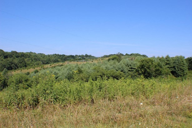 Land (Acreage), Lots/Land/Farm - Floyd, VA (photo 5)