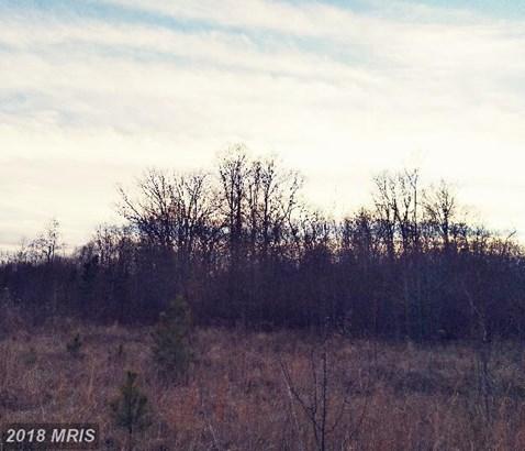 Lot-Land - DENTON, MD (photo 3)