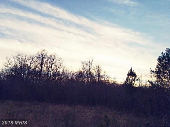 Lot-Land - DENTON, MD (photo 4)