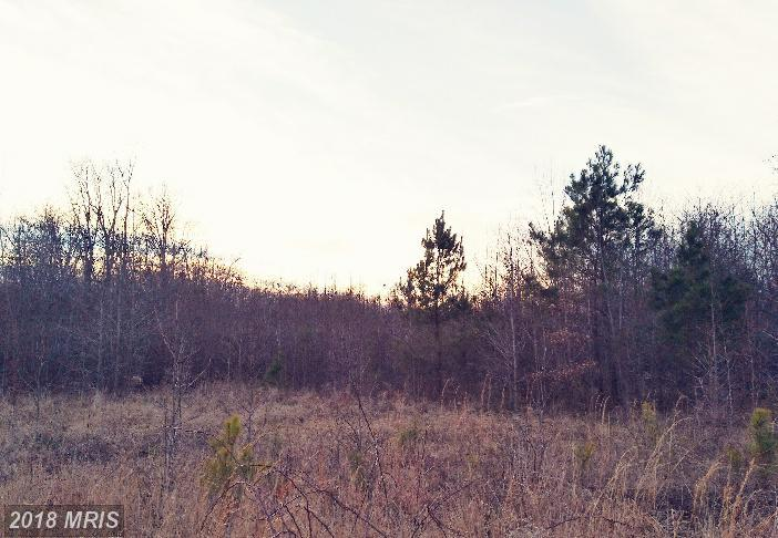 Lot-Land - DENTON, MD (photo 5)