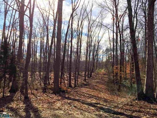 Land - KEENE, VA (photo 4)