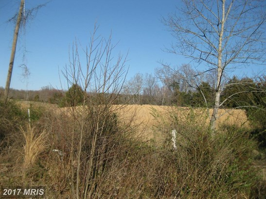 Lot-Land - LIGNUM, VA (photo 3)