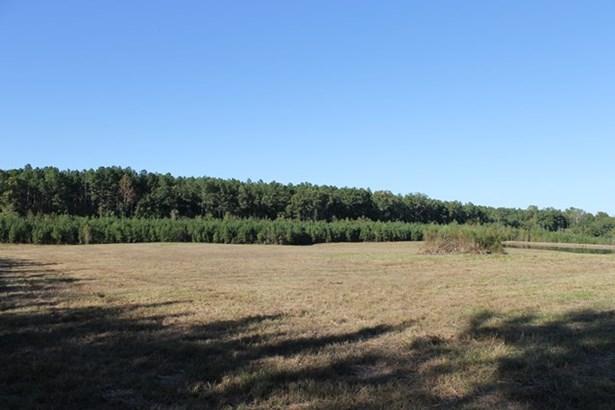 Land - Chase City, VA (photo 3)
