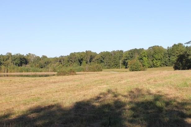 Land - Chase City, VA (photo 4)