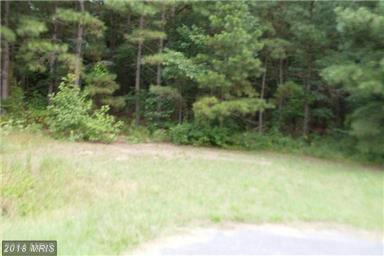 Lot-Land - MARDELA SPRINGS, MD (photo 1)